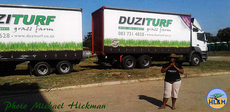 High quality cynodon dactylon instant lawn turf for grassing waterways project HLEM Hlengiwe Luthuli Environmental Management (Pty) Ltd KZN Durban South Africa
