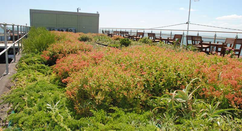 green roof sand pumping station durban